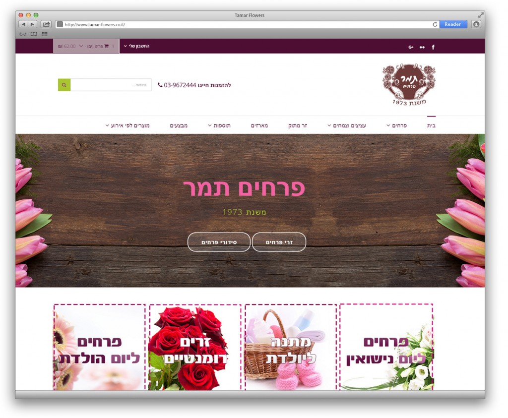 עיצוב ובניית אתר עבור פרחים תמר